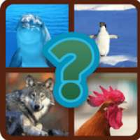 UP- GUESS THE ANIMAL